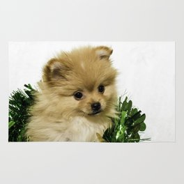 Tan Pomeranian Puppy Wrapped up in a Green and Gold St. Patrick's Day Garland Rug