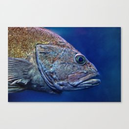 Swimming The Ocean Blue Canvas Print