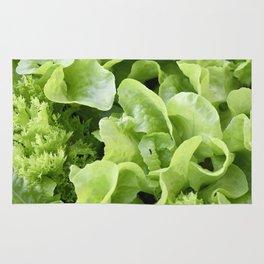 Lettuce 1 Rug