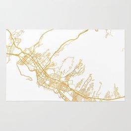 HONOLULU HAWAII CITY STREET MAP ART Rug