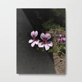Flowers in Italy Metal Print