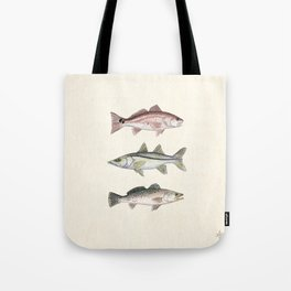"""""""Inshore Slam!"""" by Amber Marine ~ Redfish, Snook, & Trout Watercolor Illustration, (Copyright 2013) Tote Bag"""