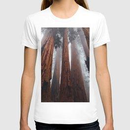 Woodley Forest T-shirt