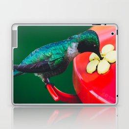 The Sweet Stuff Laptop & iPad Skin
