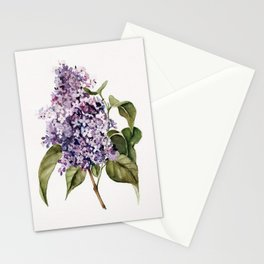 Lilac Branch Stationery Cards