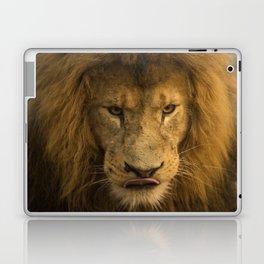 Lion - Time To Eat Laptop & iPad Skin