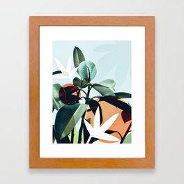 Simpatico Framed Art Print