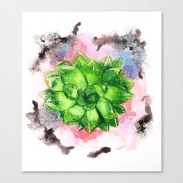 Bright green succulent Canvas Print
