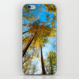 Kaleidoscope - Fall Colors in Trees of Great Smoky Mountains iPhone Skin
