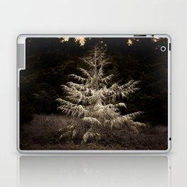Decayed White Fir Laptop & iPad Skin