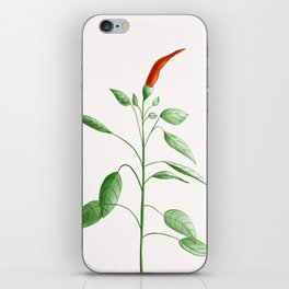 Little Hot Chili Pepper Plant iPhone Skin
