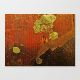 Painters Floorboard Canvas Print