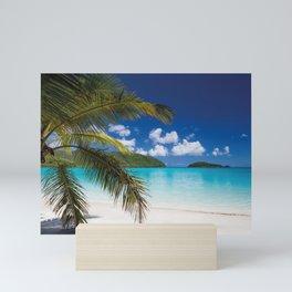 Tropical Shore Mini Art Print