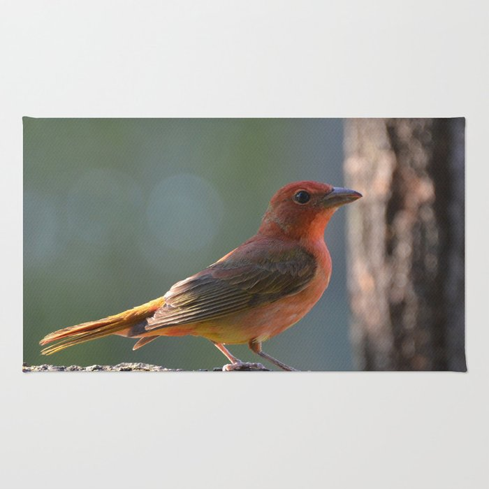 Immature Summer Tanager Rug