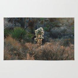 Desert Light Rug