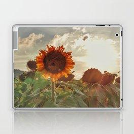 Golden Sunflower Sunsets Laptop & iPad Skin