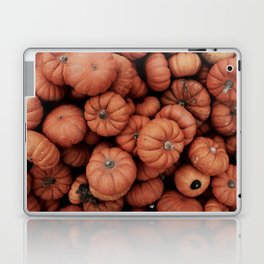 Pumpkin Farm Laptop & iPad Skin