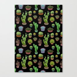 Potted cacti and succulents on black background Canvas Print