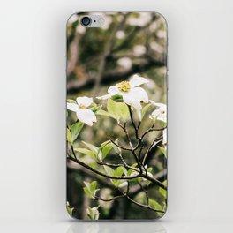 Dogwood 6 iPhone Skin