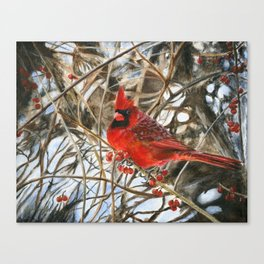 Winter Cardinal by Teresa Thompson Canvas Print