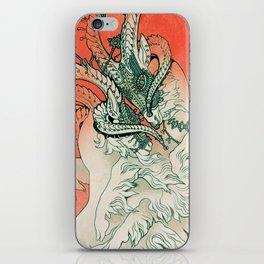 Verdigris iPhone Skin