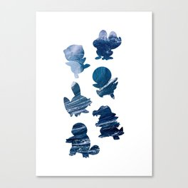 The Water Types Canvas Print