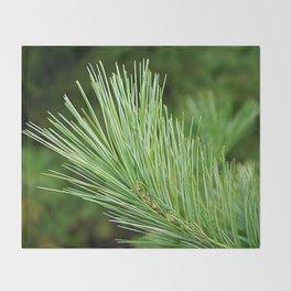 White pine branch Throw Blanket