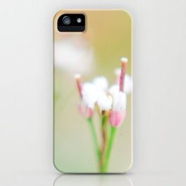 Tiny Dancer (1) iPhone Case
