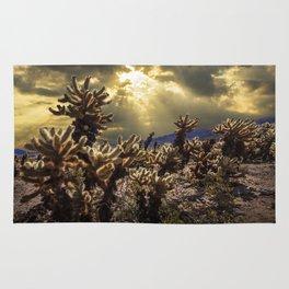 Cholla Cactus Garden bathed in Sunlight in Joshua Tree National Park California Rug