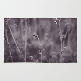 Desert Grasses Rug