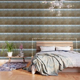 beautiful barley field Wallpaper