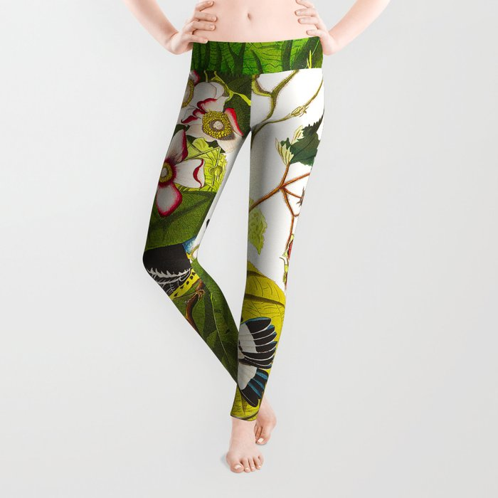 Black and Yellow Warbler Bird Leggings