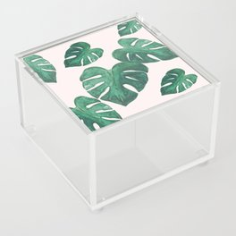 Monstera Leaves on Pink Acrylic Box