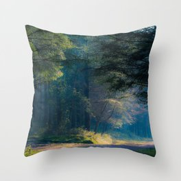 In the faery forest Throw Pillow