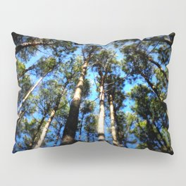 TREES ( A Blessed Glance Up) Pillow Sham