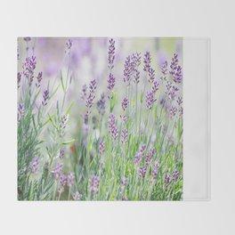 Lavender in summer garden Throw Blanket
