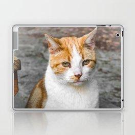 Paw Patrol Laptop & iPad Skin