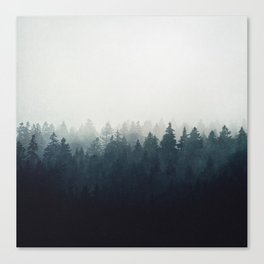 A Wilderness Somewhere Canvas Print
