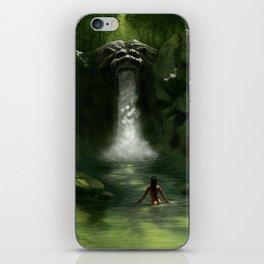Lion Falls iPhone Skin