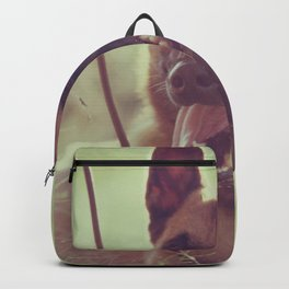 Malinios Beauty dog picture Backpack