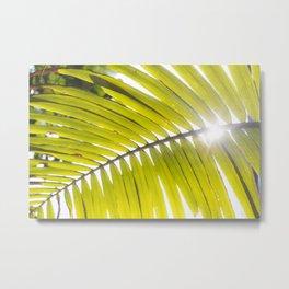 Leaf arc Metal Print