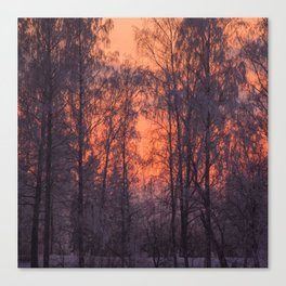 Winter Scene - Frosty Trees Against The Sunset #decor #society6 #homedecor Canvas Print