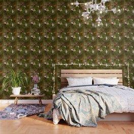 Sweet Butterfly Wallpaper