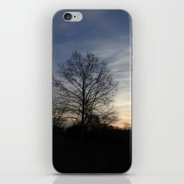 Silhouettes at Sunset iPhone Skin