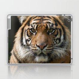 Look into my eyes by Teresa Thompson Laptop & iPad Skin