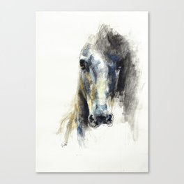 Horse Drawing Alerte V Canvas Print