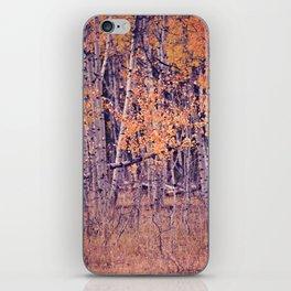 Autumn Orange I iPhone Skin