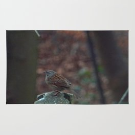 Dunnock in my garden Rug