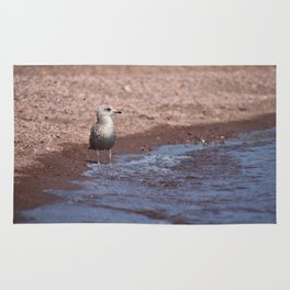 Gull in the Waves Rug