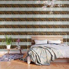 wide open Wallpaper
